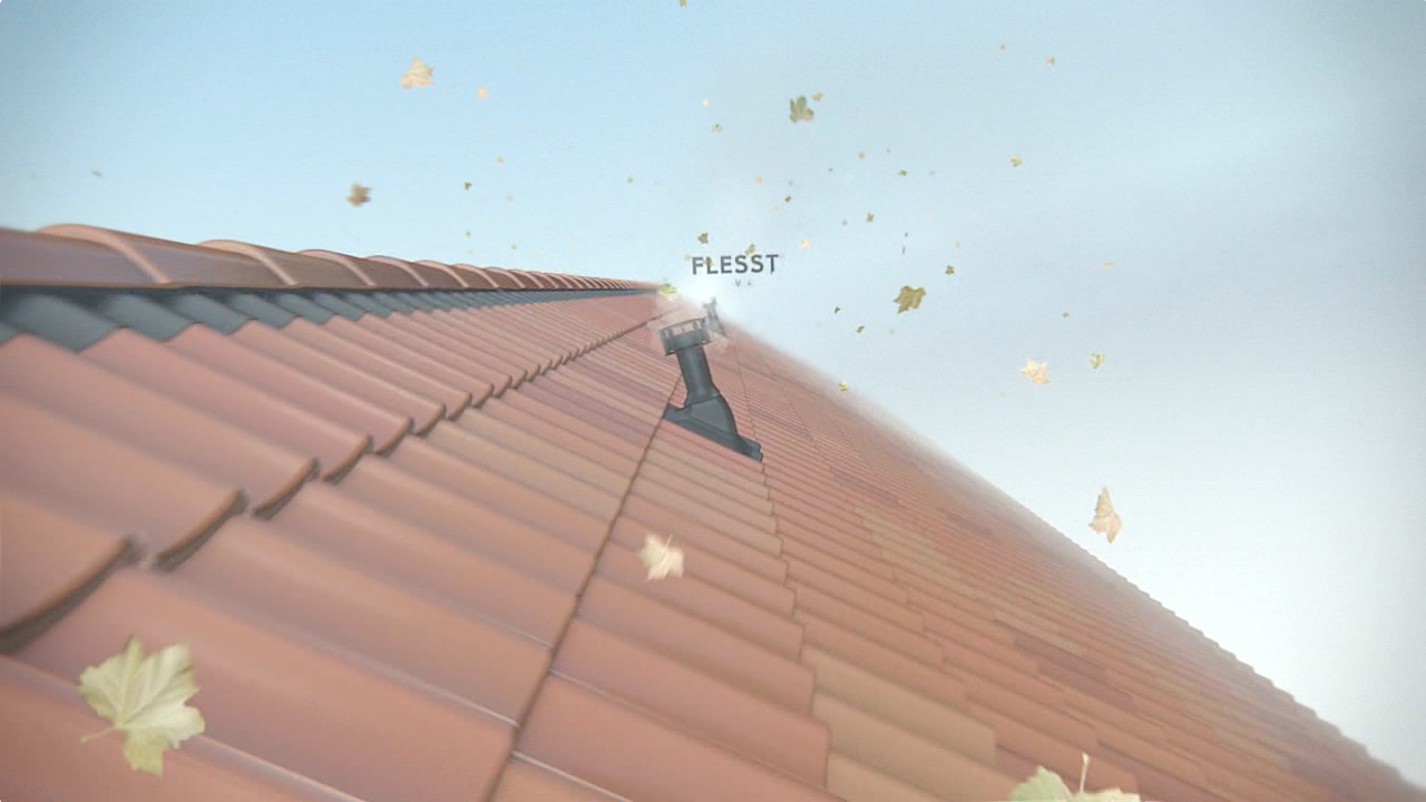 01_Flesst